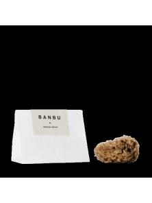 ESPONJA MAR CARIBE - BANBU - 8420078429527