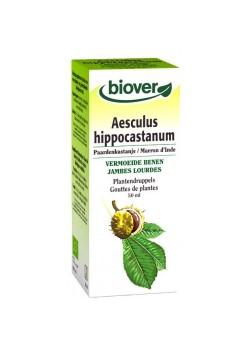 AESCULUS HIPPOCASTANUM 50ML BIO - BIOVER - 5412141002006