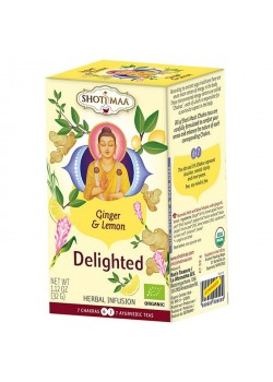 INFUSION DELIGHTED JENGIBRE Y LIMON 16 FILTROS - SHOTI MAA - 8717853493072