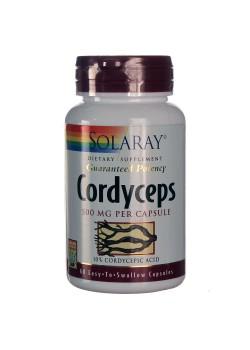 CORDYCEPS 60 CAPSULAS - SOLARAY - 076280309348